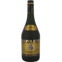 Brand Special X.O Reserve Napoleon C. DE Gourmont - Cópia